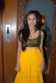 Beautiful Keerthi in Sleeveless Dress at Karni Jewellers Launch, Hyderabad