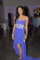 Telugu Actress Karthika Nair Latest Hot Stills in Blue Dress