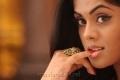 Dammu Karthika Stills