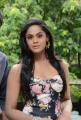 Allari Naresh-Monal Gajjar-Karthika Nair Film Press Meet