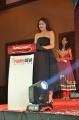 Actress Sayesha Saigal @ Karuppu Raja Vellai Raja Press Meet Stills