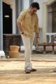 Actor Pawan Kalyan in Katamarayudu New Stills HD