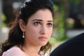 Actress Tamanna in Kathi Sandai Movie Pics
