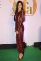 Actress Katrina Kaif @ IIFA Rocks 2019 Green Carpet Photos