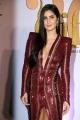 Bollywood Actress Katrina Kaif Photos @ IIFA Rocks 2019 Green Carpet