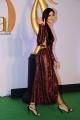 Actress Katrina Kaif Photos @ IIFA Rocks 2019 Green Carpet
