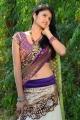 Telugu Actress Kausalya Hot Photos in Saree