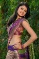 Actress Kausalya Hot Photos @ Nagamani Movie Opening