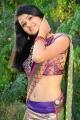 Telugu Actress Kausalya Hot Saree Photos
