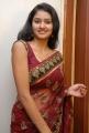 Telugu Actress Kousalya in Transparent Saree Hot Pics