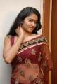 Cute Actress Kausalya Hot Photos in Transparent Saree