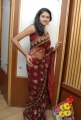 Actress Kausalya Hot Pics in Shimmer Faux Georgette Saree