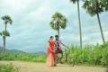 Kavvintha New Movie Photos