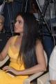 Kavya Singh Hot Stills at Half Boil Audio Launch
