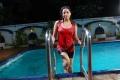 Keerthi Chawla Hot Swimsuit Stills