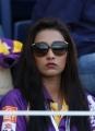 CCL 3 : Kerala Strikers Vs Bengal Tigers Match Photos