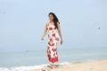 Khakee Movie Actress Rakul Preet HD Photos