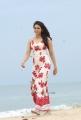 Khakee Movie Heroine Rakul Preet Singh Photos