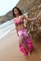Neetu Chandra Khiladi stills