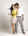 Vishal Sarah Jane Dias in Khiladi Movie Stills