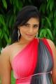 Actress Divya Spandana in Kicha Movie Stills