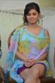 Actress Meera Chopra at Killadi Press Meet Stills