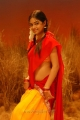Actress Meera Chopra in Killadi Tamil Movie Stills