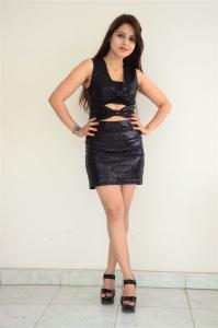 Actress Kislay Stills @ Ekantha Vela Movie Press Meet