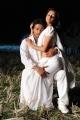 Tanish Anchal Hot Spicy Kodi Punju Movie Stills
