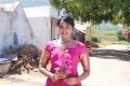 Actress Sahana in Kokkira Kulam Tamil Movie Stills