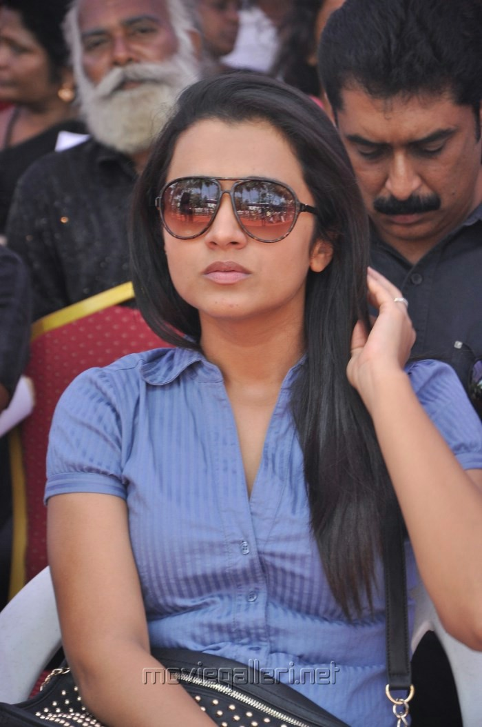 Actress Trisha Fasts in Support of Sri Lankan Tamils Photos