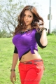 Actress Komal Jha Hot Photos in Eduruleni Alexander Movie