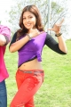 Telugu Actress Komal Jha Hot Photos in Eduruleni Alexander