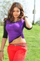 Eduruleni Alexander Movie Actress Komal Jha Hot Photos