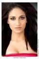 Tamil Actress Komal Sharma Photo Shoot Pics