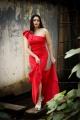 Tamil Actress Komal Sharma New Photoshoot Images