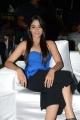 Actress Regina Cassandra @ Kotha Janta Movie Audio Launch Stills