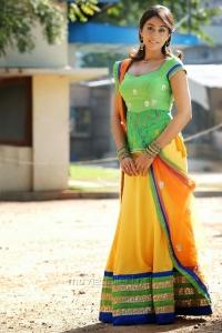 Kotha Janta Actress Regina Cassandra Hot Stills