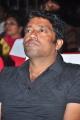 R. Rathnavelu @ Krishna Gadi Veera Prema Katha Audio Launch Stills