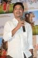 Sridhar Lagadapati @ Krishnamma Kalipindi Iddarini Movie Trailer Launch Stills