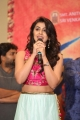 Nikki Galrani @ Krishnashtami Platinum Disc Function Photos