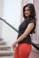 Actress Kriti Kharbanda Latest Stills at Ongole Gitta Movie Press Meet