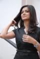 Actress Kriti Kharbanda Hot Stills at Ongole Gitta Press Meet