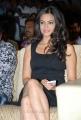 Kriti Kharbanda Hot Photos in Black Dress at Ongole Gitta Audio Launch