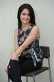 Telugu Actress Kriti Kharbanda Cute Photoshoot Images