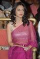 Kriti Kharbanda Hot in Transparent Saree Stills