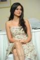 Ongole Githa Actress Kriti Kharbanda Latest Hot Stills