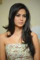 Beautiful Kriti Kharbanda Latest Hot Stills
