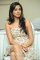 Ongole Githa Heroine Kriti Kharbanda Latest Hot Stills