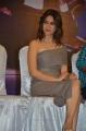 Actress Kriti Kharbanda Hot Pics @ Bruce Lee Press Meet